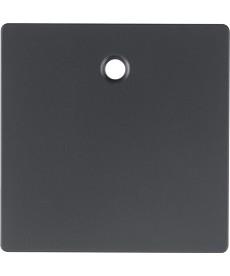 Płytka czołowa do łącznika cięgłowego Berker Q.1/Q.3 antracyt, aksamit